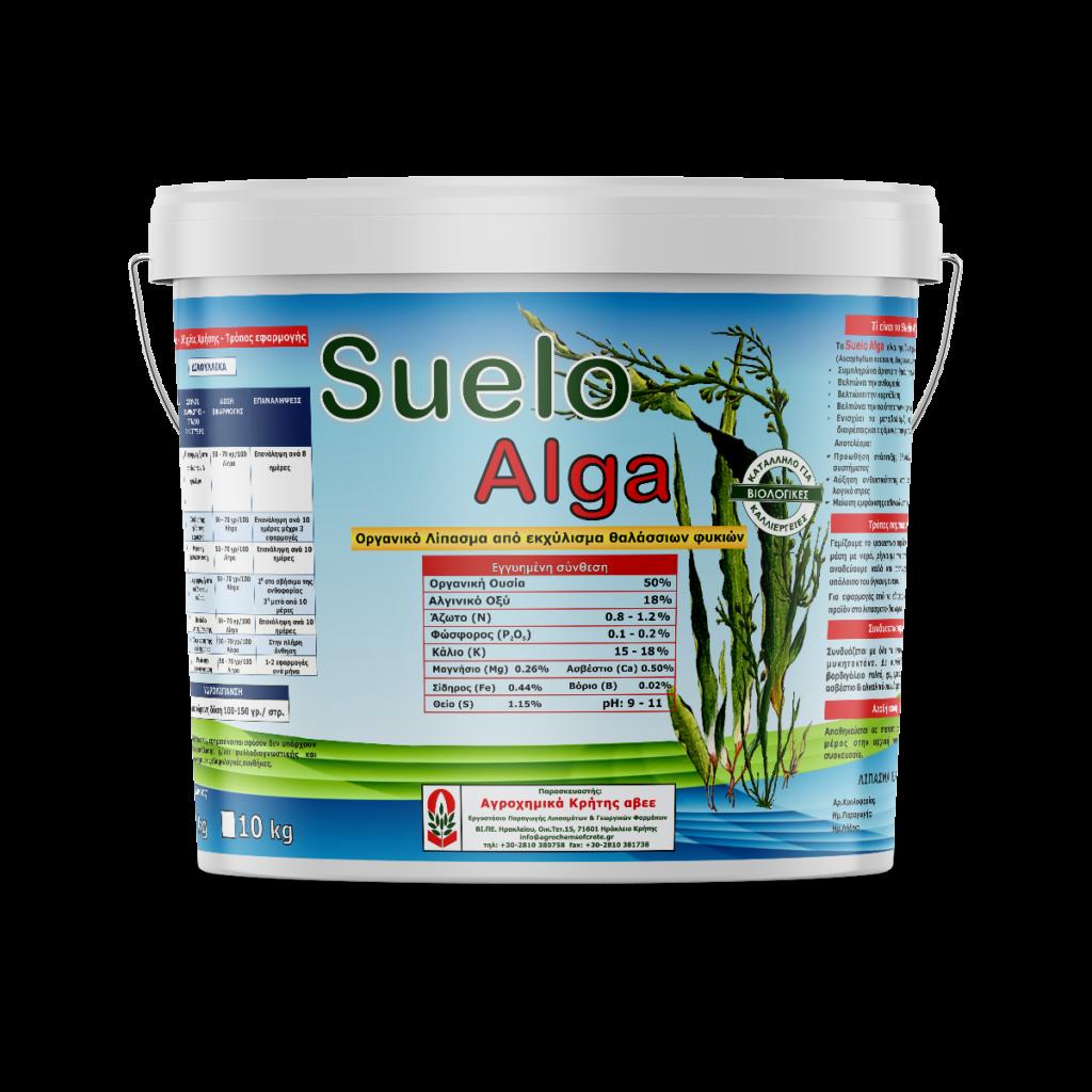 Suelo Alga